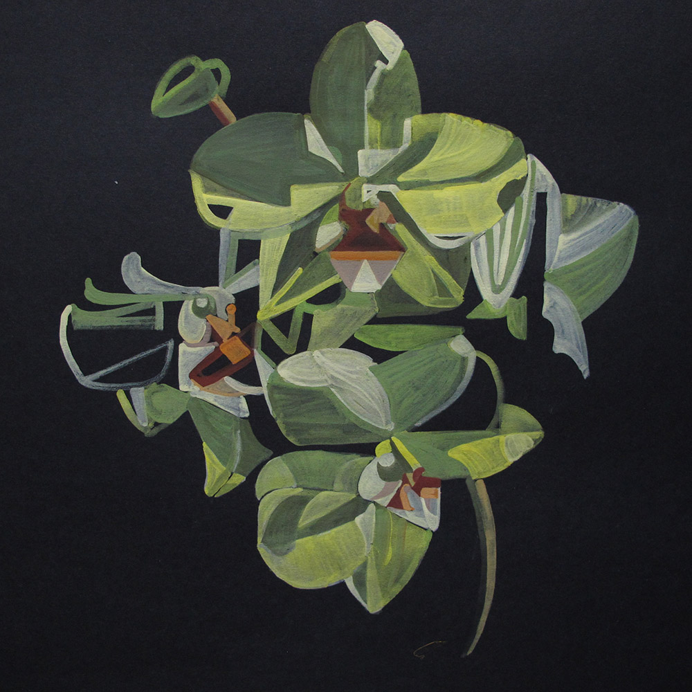 Yellow Orchid_gouache study_wp